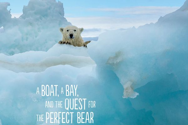 Arctic Solitaire: A Boat, a Bay, and the Quest for the Perfect Bear (Courtesy Mountaineers Books)