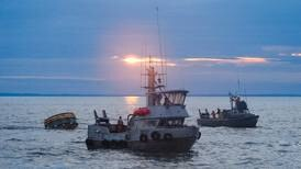 As hoped, early Alaska salmon prices are up across the board
