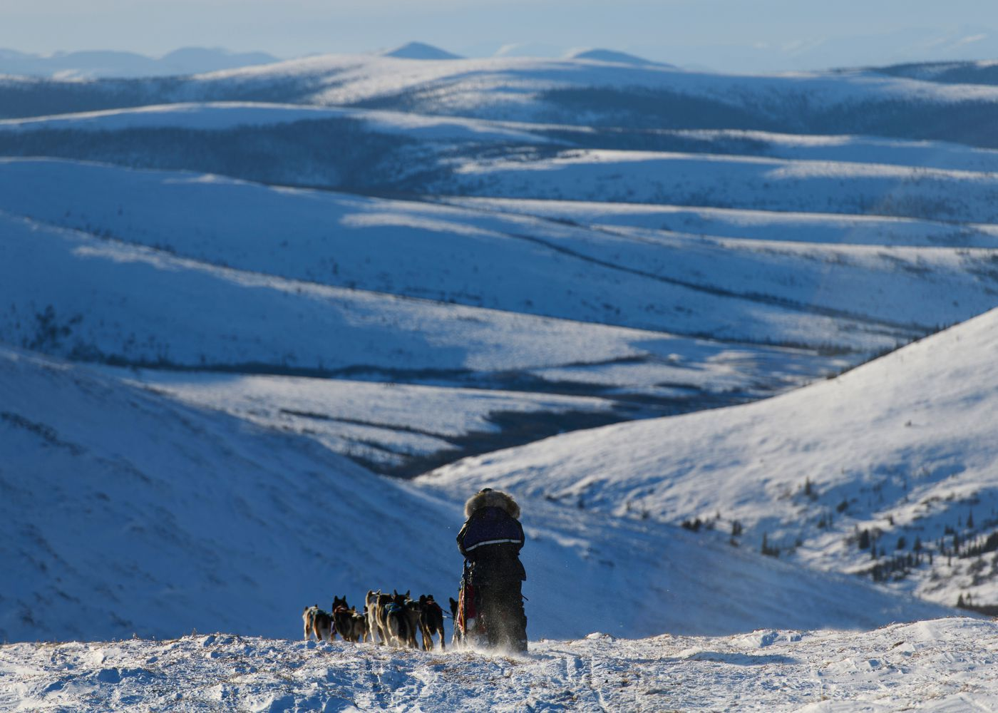 Michelle Phillips begins the descent toward the Mile 101 checkpoint from Eagle Summit. Yukon Quest International Sled Dog Race frontrunners passed checkpoints along the Steese Highway on February 10, 2019. (Marc Lester / ADN)