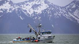 Copper River sockeye fishery reopens after delay due to low sonar counts
