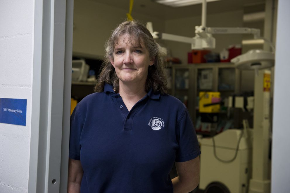 Dr. Carrie Goertz is director of animal health for the Alaska SeaLife Center. (Marc Lester / Alaska Dispatch News)