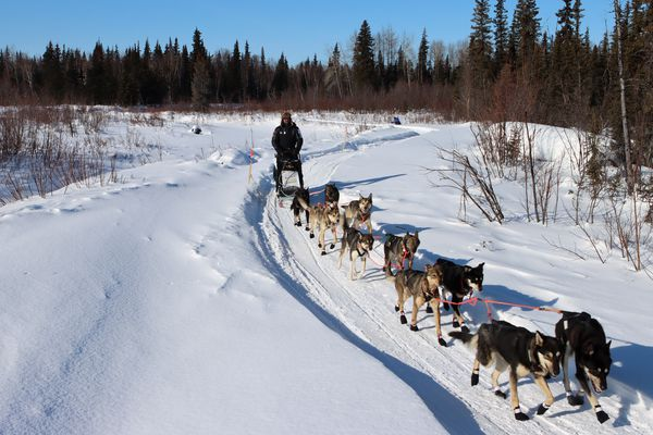 Pete Kaiser leaves the Ophir checkpoint with his dog team during the Iditarod Sled Dog Race on Friday March 12th, 2021. (Zachariah Hughes/for ADN)