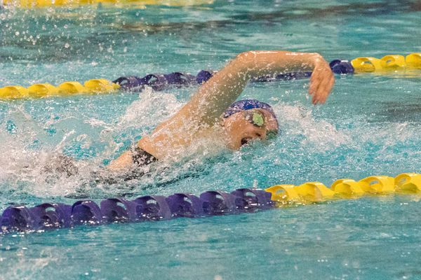 Kodiak's Marina Cummiskey swims to victory in the girls 200 yard freestyle race Saturday, Nov. 4, 2017 during the Alaska state swim/dive championships at Bartlett. (Loren Holmes / Alaska Dispatch News)