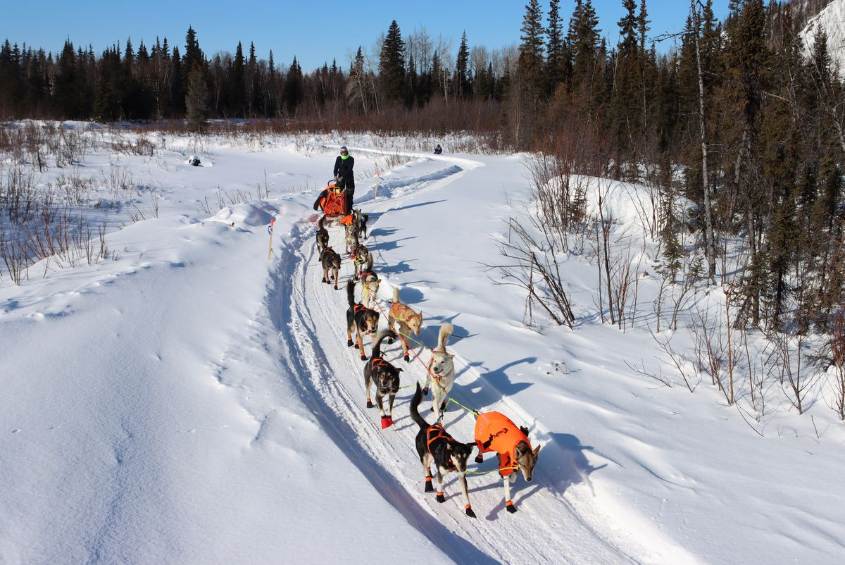 Joar Leifseth Ulsom and his dogs leave the Ophir checkpoint Friday. (Zachariah Hughes/for ADN)