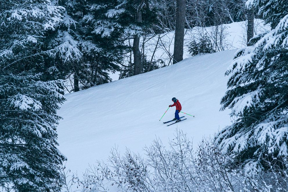 A skier goes past trees heavy with snow on opening day at Alyeska. (Loren Holmes / ADN)