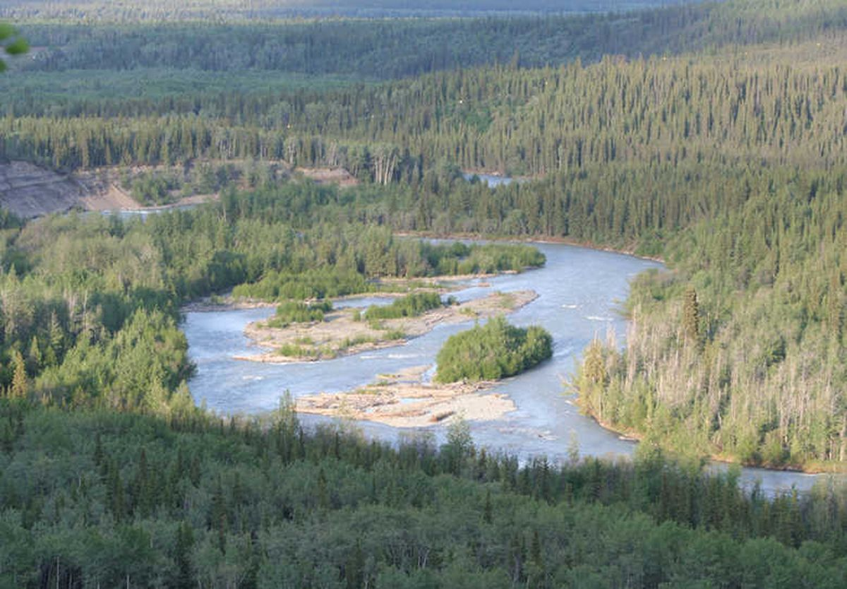 The Klutina River looking to the east. (Alaska Department of Fish and Game)