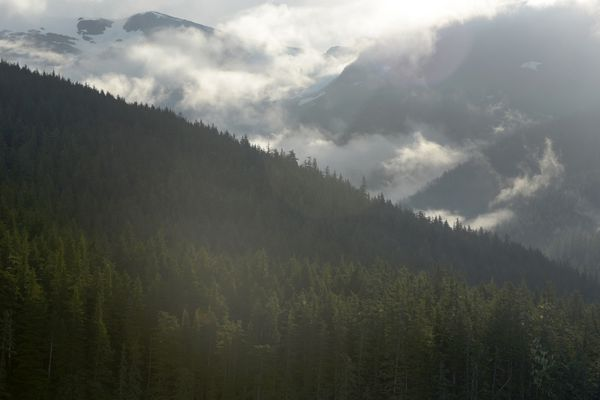 Clouds form in the valleys of the Tongass National Forest above Holkham Bay in Southeast Alaska on Thursday, July 19, 2018. (Bob Hallinen / ADN)