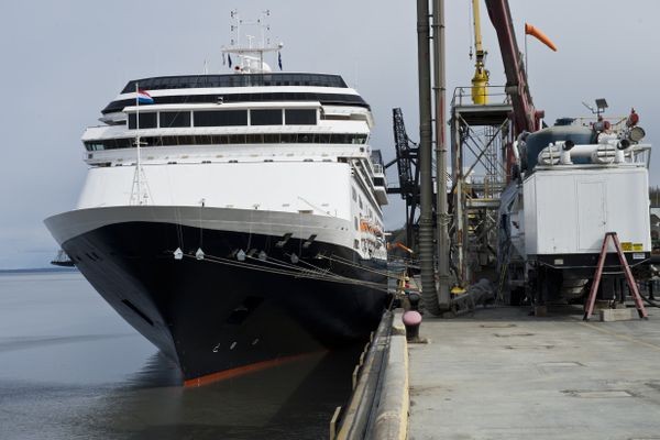 Zaandam, a 780-foot Holland America cruise ship, arrived in Anchorage early Monday, May 14, 2018. Passengers aboard it are on a two-week cruise that originated in Seattle and traveled to several ports in Southeast Alaska before coming here. The ship has 716 staterooms and can carry more than 1,800 total passengers. In Anchorage, tour buses carried travelers into the city. Their journey continues on to Homer and Kodiak before making the return trip to Seattle. Port of Anchorage external affairs director Jim Jager said the Zaandam will visit Anchorage ten times in 2018. No other cruise ships are scheduled to come here in 2018, he said. (Marc Lester / ADN)