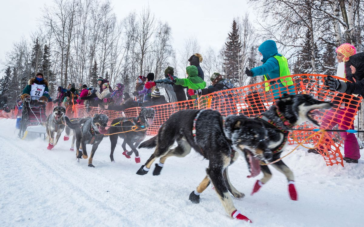 Jodi Bailey mushes down Broadmoor Avenue in Fairbanks during the start of the Iditarod Trail Sled Dog Race on March 9, 2015. (Loren Holmes / ADN archive)
