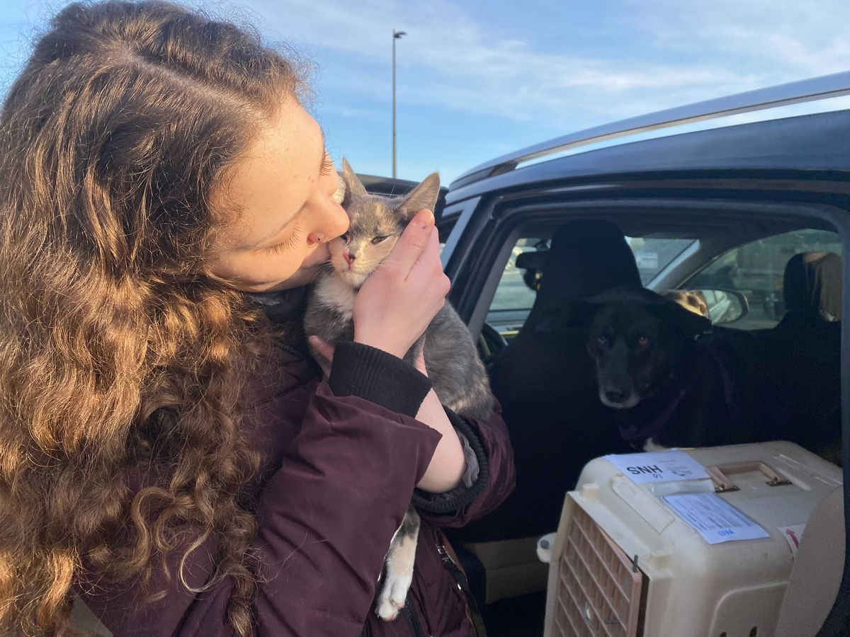 Haines resident Cassidy Timm kisses Spot the kitten, who returned home by plane after getting lost on the Alaska state ferry Matanuska. (Claire Stremple / KTOO)