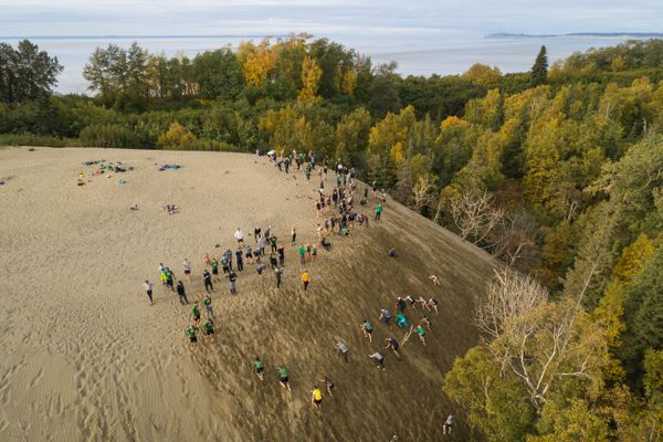 University of Alaska Anchorage athletes run up the Kincaid sand dune Friday, Sept. 21, 2018 during their All Athlete Sand Dune Sprint Sufferfest. The grueling workout is also a team-building exercise, bringing together athletes from the ski team, basketball, track, gymnastics and hockey. (Loren Holmes / ADN)