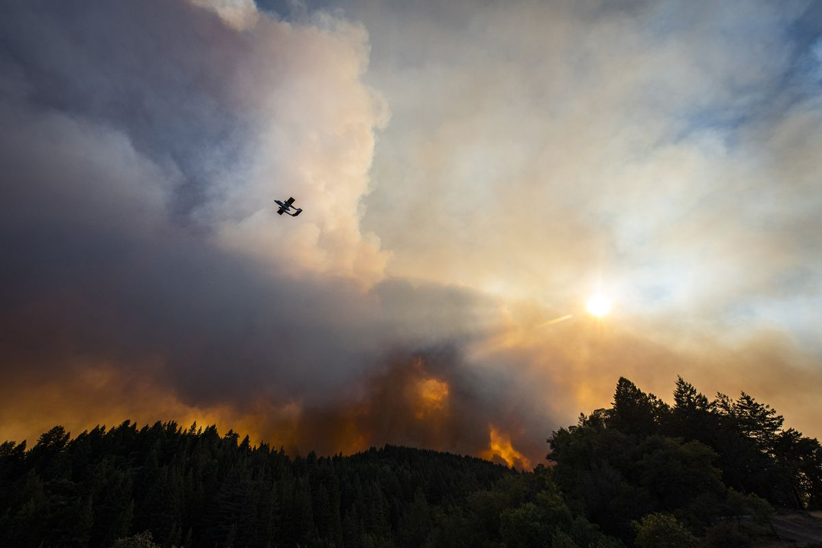 A Cal Fire air attack plane flies over the Walbridge blaze near Healdsburg, Calif., on Thursday. Photo by Stuart W. Palley for The Washington Post