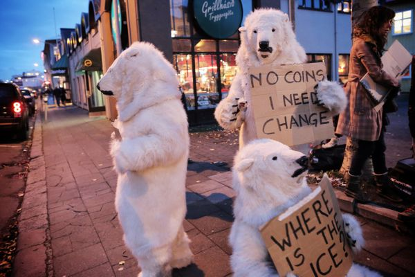 About a dozen Greenpeace activists -- several dressed in polar bear costumes -- demonstrated Friday at the opening reception of the first Arctic Circle conference, an international gathering of some 1,000 business leaders, government officials and others with interests in the Arctic.