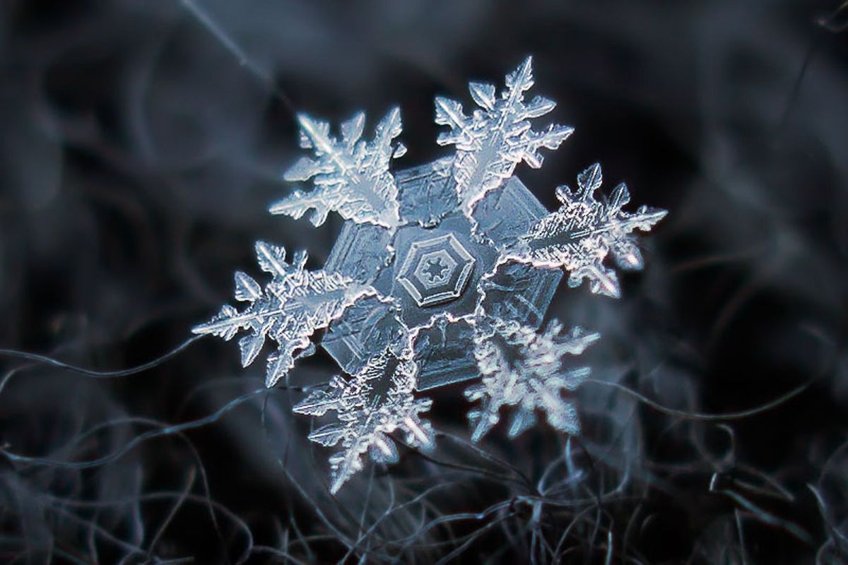 Photos Inside The Breathtaking World Of Snowflakes Magnified Anchorage Daily News