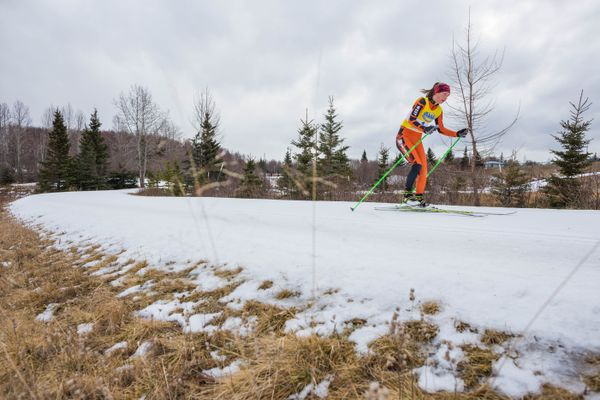West High's Aubrey LeClair skies the third leg of the ASAA / First National Bank Alaska 2016 Nordic Skiing State Championship relay race at Kincaid Park on Saturday, Feb. 27, 2016. Both the West High boys and girls took home state titles after the three-day race.