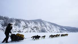 Frontrunner Sass survives moose encounter on Yukon Quest trail