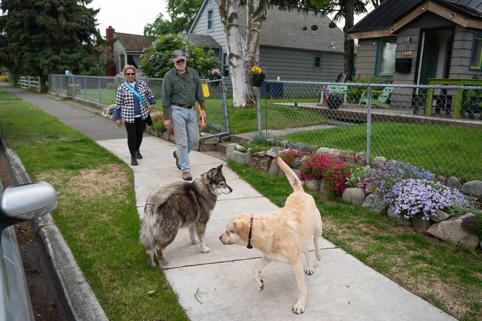 Stephanie Rhoades, Russ Webb and their dog Chance stop by Tonio Nguyen's home to greet Nguyen's dog Newtok on Wednesday, June 17, 2020 in South Addition. (Loren Holmes / ADN)