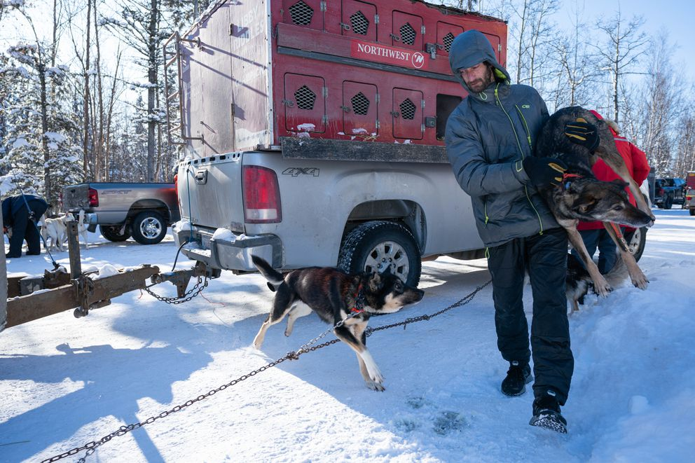 Girdwood musher Nicolas Petit carries a dog from his truck during the Iditarod vet checks Wednesday, March 4, 2020 in Knik. (Loren Holmes / ADN)