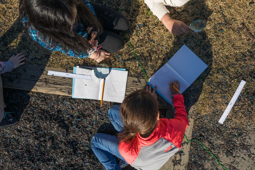 Campbell Elementary third-graders record what they see in their playground on Friday, May 5, 2017. (Loren Holmes / Alaska Dispatch News)