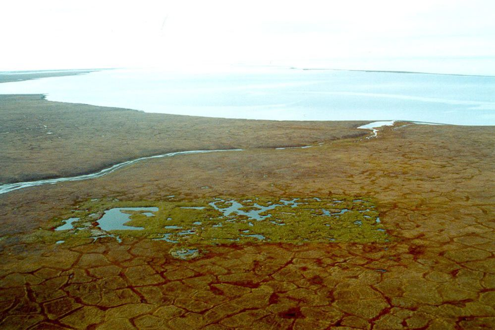 The site of the only oil well - completed in the mid-1980s - ever drilled on the Arctic National Wildlife Refuge. The polygonal patterns in the undisturbed tundra are signs of ice wedges, which in the disturbed area have melted, leading to the pooled water. (U.S. Fish and Wildlife Services via The New York Times)