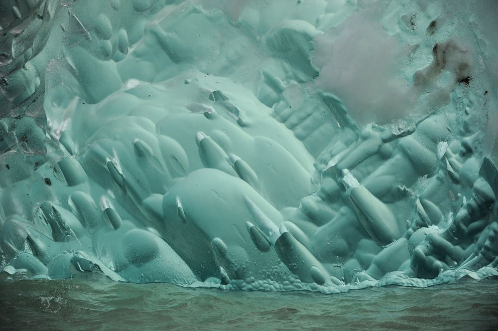 A green iceberg floats in front of Dawes Glacier at the head of Endicott Arm in the Tongass National Forest. (Bob Hallinen / ADN)