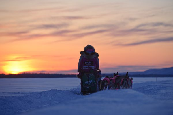 DeeDee Jonrowe heads down the Yukon River after leaving the Ruby checkpoint of the Iditarod Trail Sled Dog Race on Friday, March 9, 2012. (Marc Lester / Anchorage Daily News)