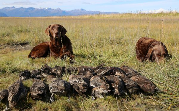 More Alaska women want to try hunting  Here's how to get