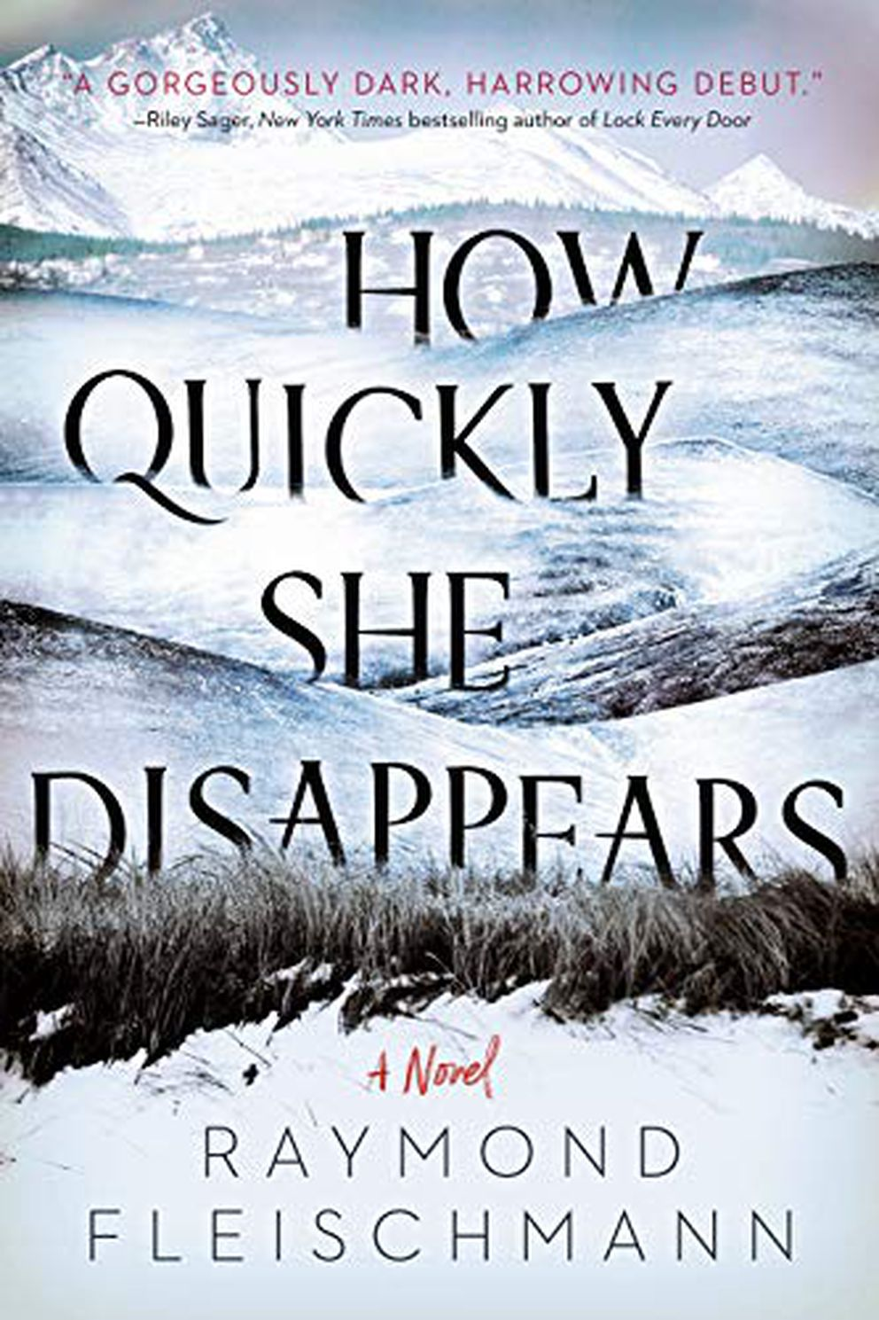'How Quickly She Disappears, ' by Raymond Fleischmann
