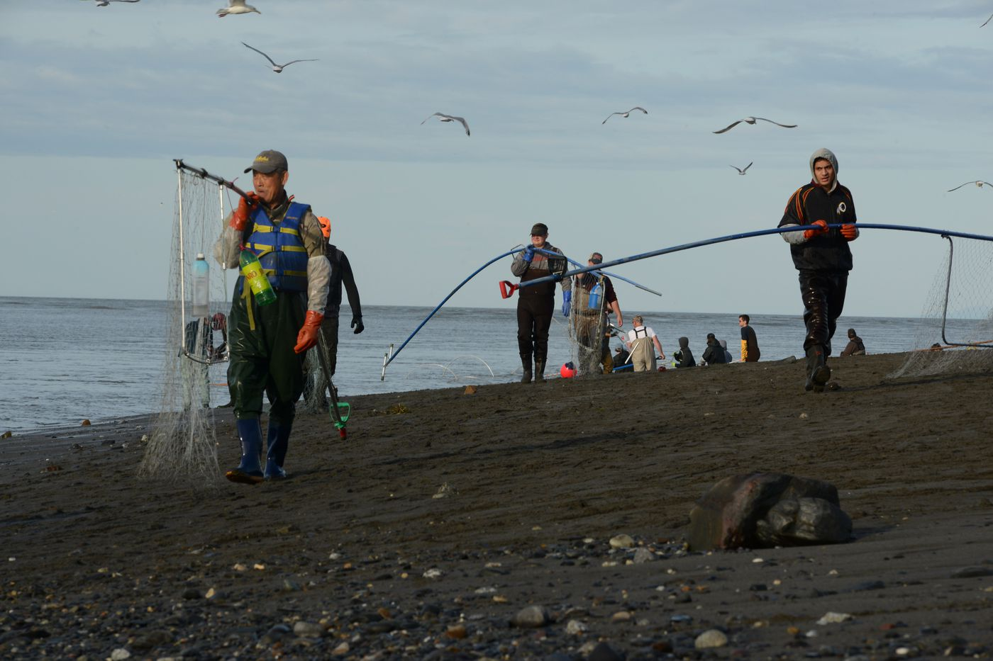 Dipnetters walk the 'conga line ' on the north Kenai River beach while fishing for salmon on Tuesday. People using the conga line method walk upstream on land, then, with nets in the water, move downstream with the current to bring in their fish. (Anne Raup / ADN)