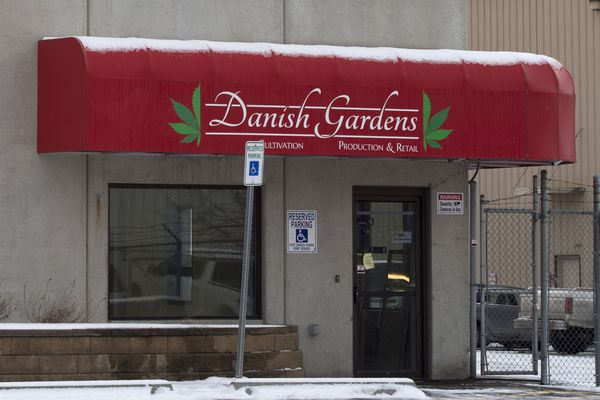 Marijuana cultivation business Danish Gardens, on Cinnabar Loop, was the victim of a break-in early Dec. 19, 2017. Packaged product was taken from a room used for storage and drying. (Marc Lester/ ADN)