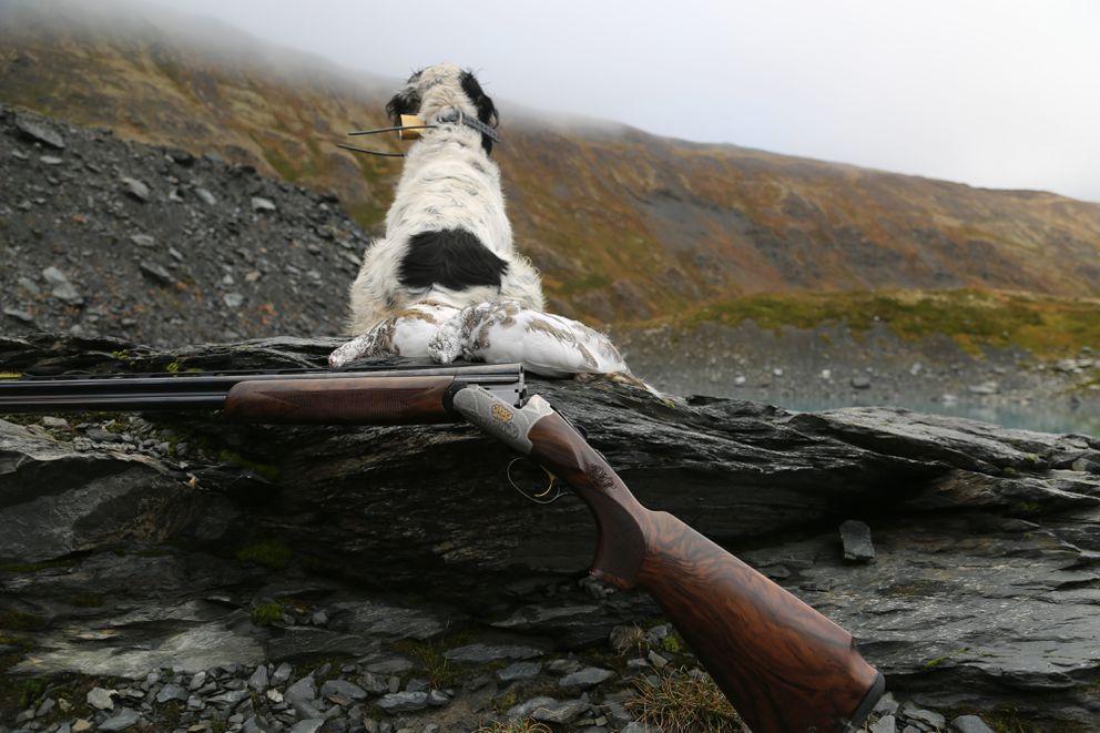Beautiful birds, beautiful country, beautiful dog, beautiful shotgun. (Photo by Steve Meyer/2014)