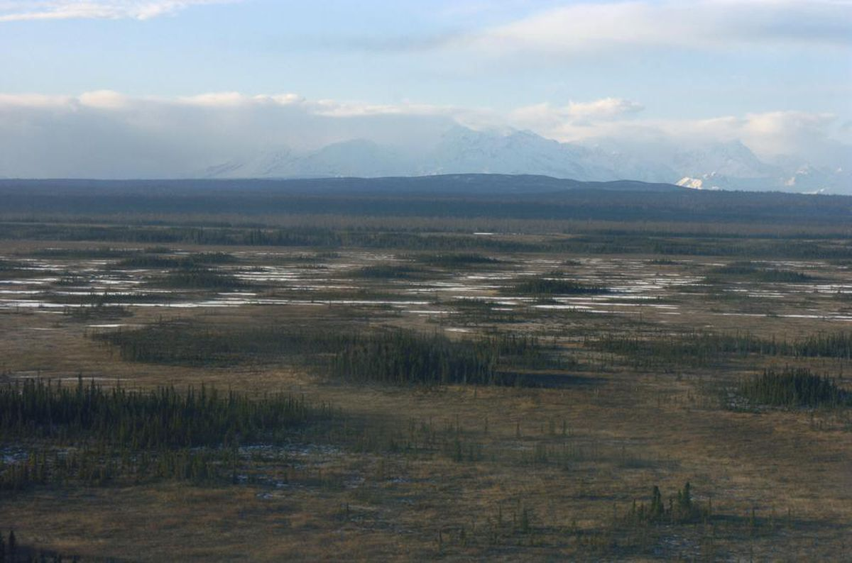 Aerial view of the proposed Chuitna Coal Project near Beluga on the west side of Cook Inlet  (Bill Roth / ADN archive 2006)