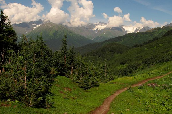 The lower section of North Face trail on Mount Alyeska looking toward Eagle Glacier.