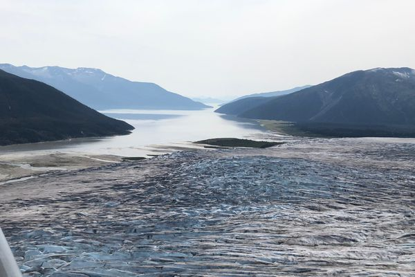 The terminus of Taku Glacier and the Taku River are seen from an aircraft, looking southwest, on Aug. 2, 2019. (James Brooks / ADN)