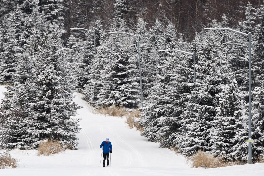 A cross country skier enjoys the new snow at Kincaid Park. The Anchorage area woke up to several inches of new snow on Thursday, December 1, 2016. (Marc Lester / Alaska Dispatch News)