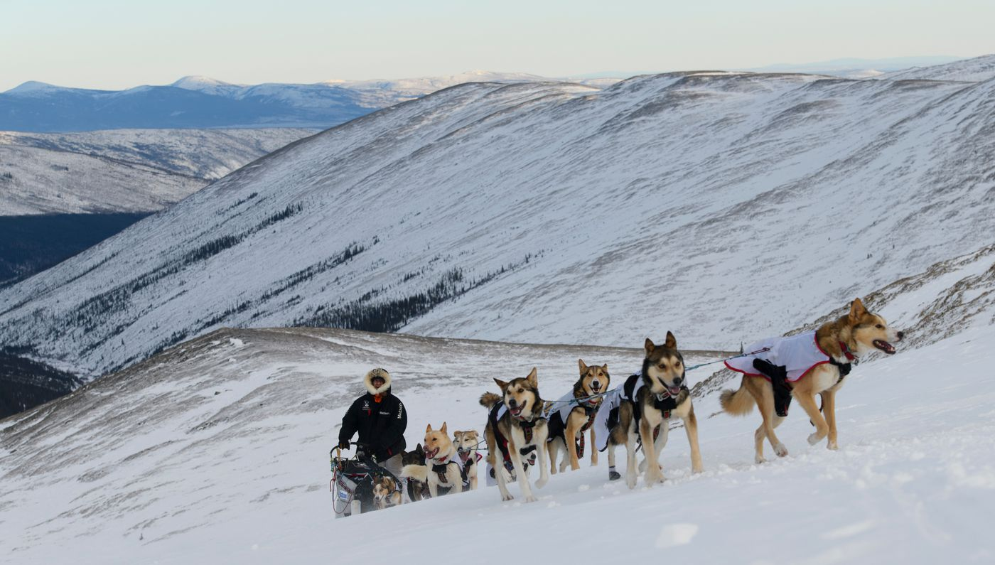 Allen Moore, of Two Rivers, climbs toward Eagle Summit with his team during the Yukon Quest International Sled Dog Race on Feb. 10, 2019. (Marc Lester / ADN archive)