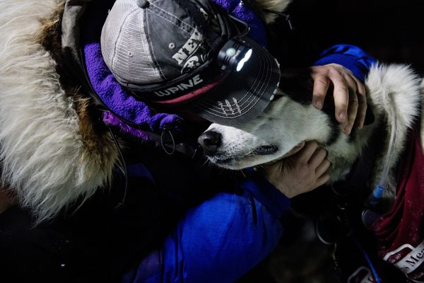 Jessie Royer hugs her lead dog after placing third in the Iditarod Trail Sled Dog Race, Wednesday, March 18, 2020, in Nome, Alaska. (Marc Lester/Anchorage Daily News via AP)