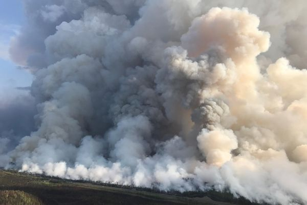 Smoke during burnout operations south of the Sterling Highway. August 26, 2019. (Alaska Fire Services)