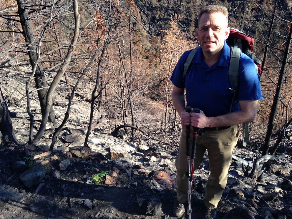 Andy Baker surveys the scene of the McHugh fire in mid-August. The McHugh fire started in mid-July 2016. It burned over hundreds of acres of Chugach State Park and threatened several structures. (Charles Wohlforth / Alaska Dispatch News)