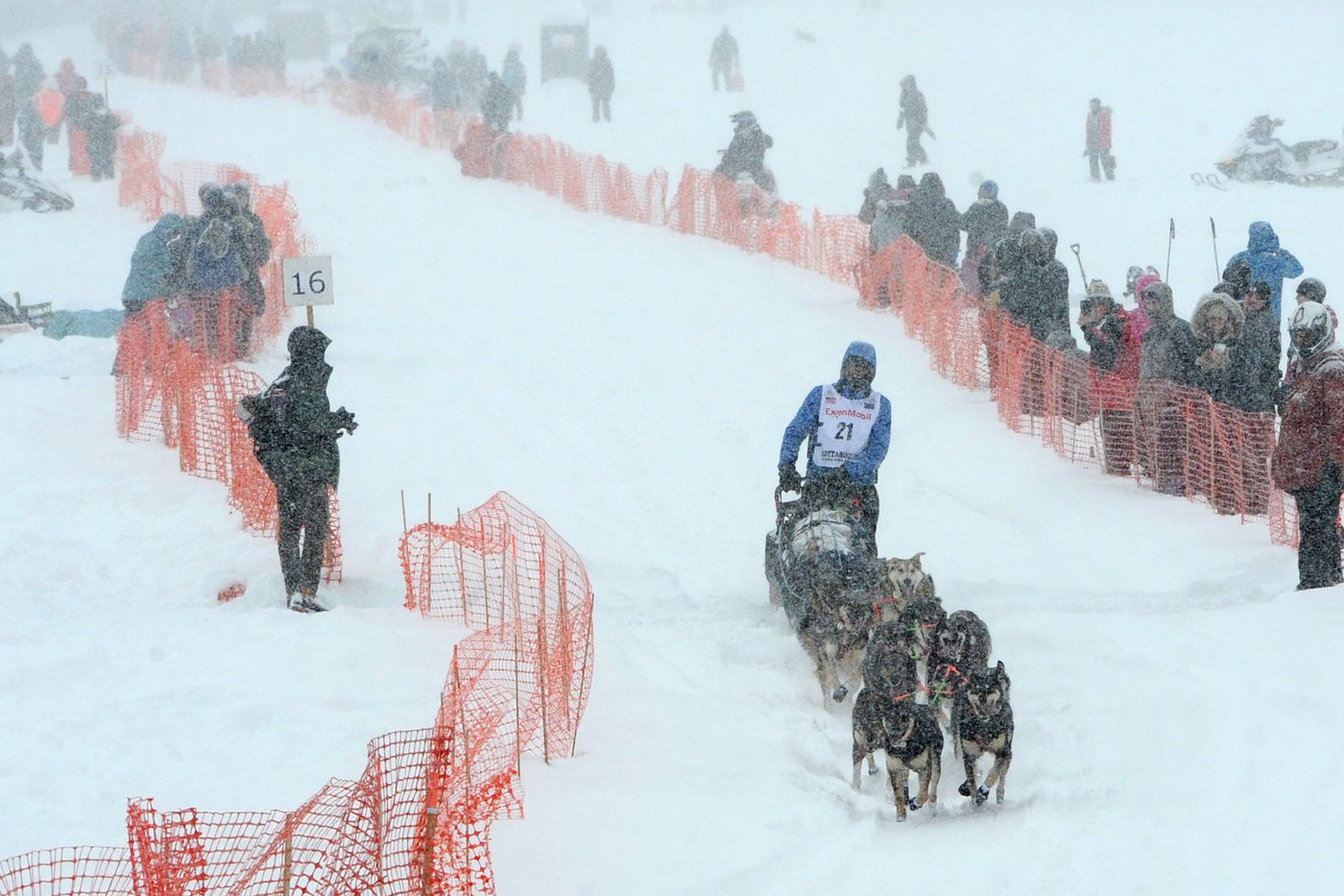 Nicolas Petit drives his dog team across Willow Lake in a snowstorm during the restart of the Iditarod Trail Sled Dog Race on Sunday. (Bill Roth / ADN)