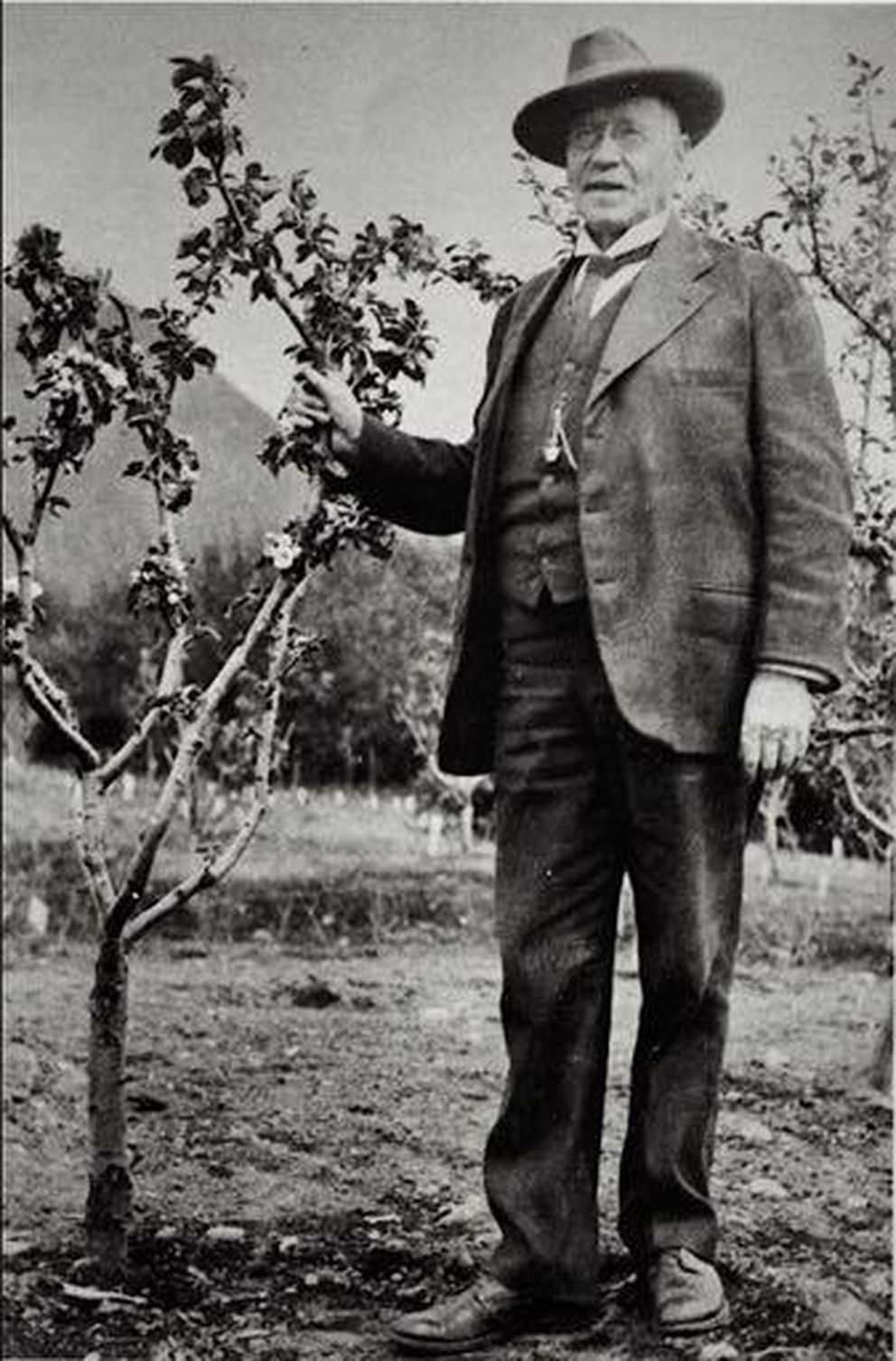 Charles Georgeson with an apple tree in Sitka around the year 1900. (Public domain photo by E.W. Merrill)