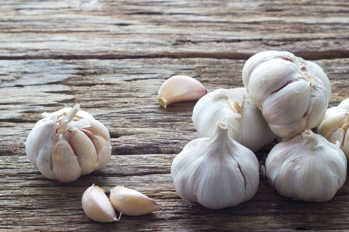 Many varieties of garlic grow well in Southcentral Alaska (Getty Images)