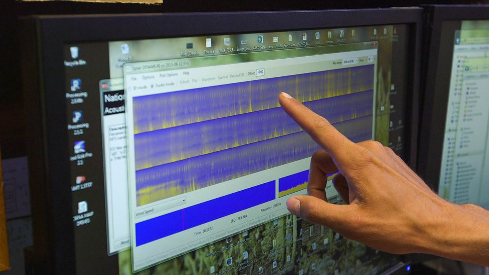 Betchkal reviews a recording at his office at park headquarters. The spectrogram is a visual representation of the audio and makes it easier to scour through the massive amount of data he records each year. (Loren Holmes / Alaska Dispatch News)