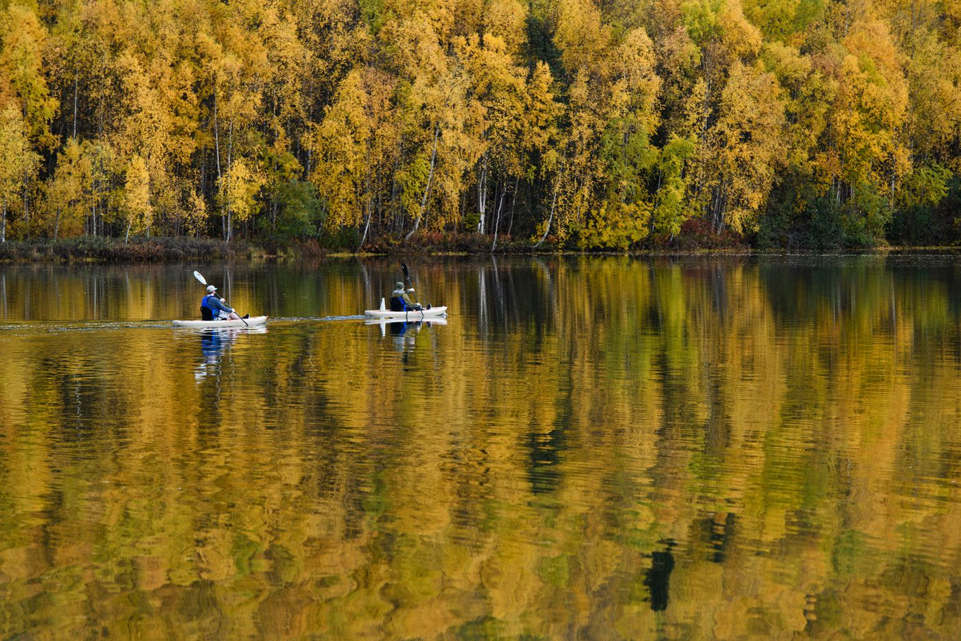 Fall colors reflect on Mirror Lake in Chugiak as kayakers paddle across on September 25, 2020. (Marc Lester / ADN)
