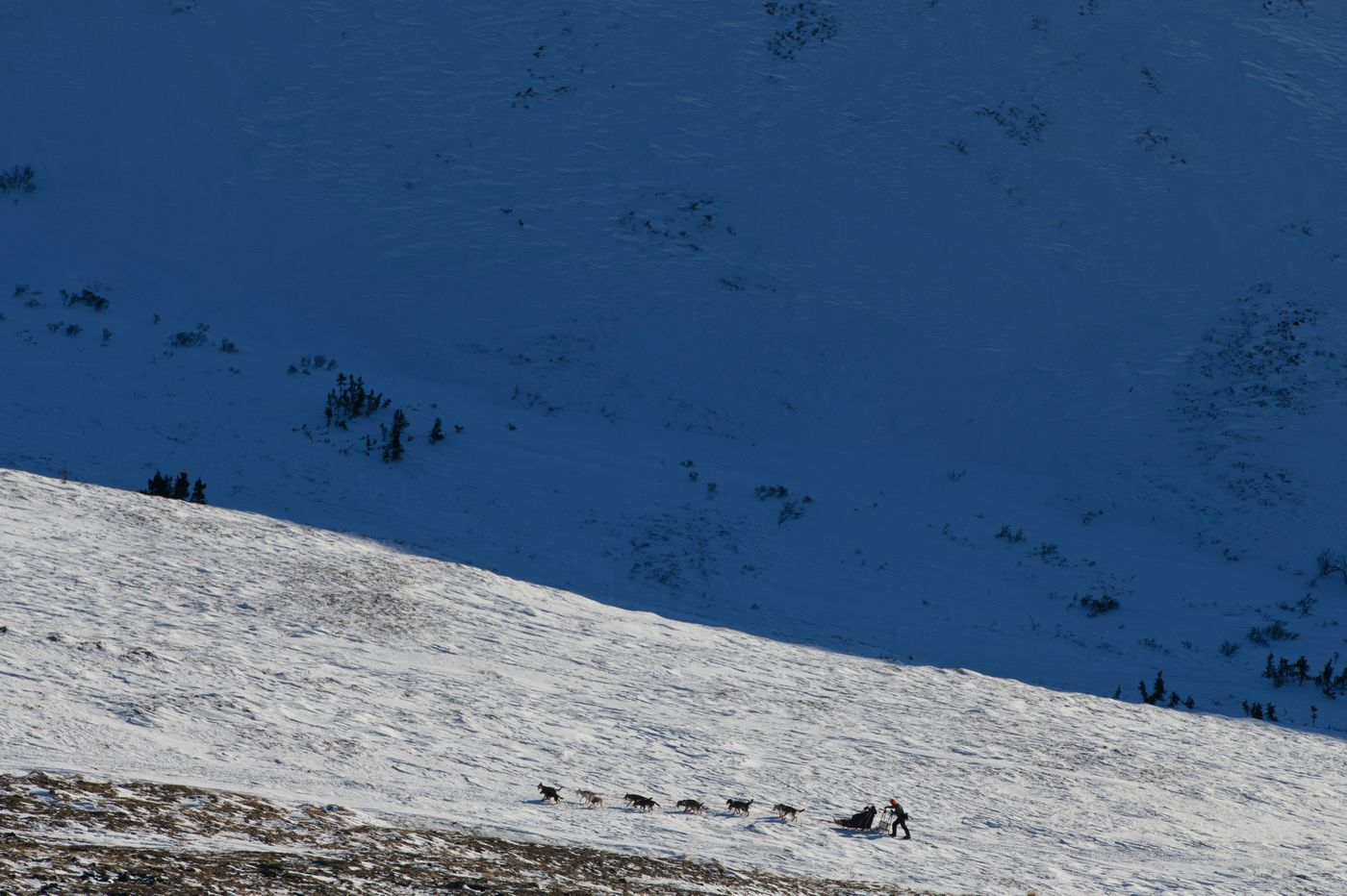 Dan Powell, a rookie from Fairbanks, climbs toward Eagle Summit during the Summit Quest 300 on February 14, 2021. (Marc Lester / ADN)