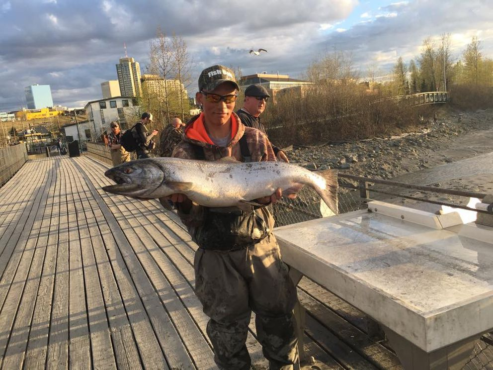 Robert Rozelle shows off the first king salmon caught this year at Ship Creek. He landed the 21.1-pounder on Monday evening. (Photo courtesy Dustin Slinker)