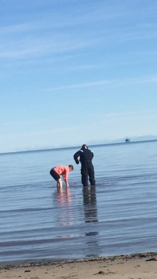 Alaska Wildlife Trooper pilot Kenneth Reiser, left, and NOAA Law Enforcement officer Noah Meisenheimer handle a stranded beluga calf on the west side of Cook Inlet on Sept. 30, 2017. Activities pictured authorized by MMHSRP's MMPA/ESA #18786-01. (NOAA photo)