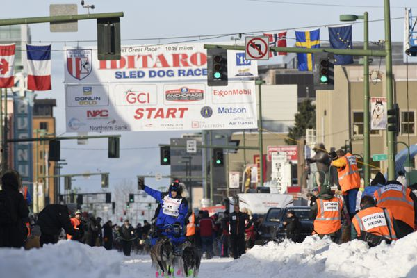 Jason Campeau mushes down 4th Avenue in Anchorage during the 2019 Iditarod Trail Sled Dog Race ceremonial start on March 2, 2019. (Marc Lester / ADN)