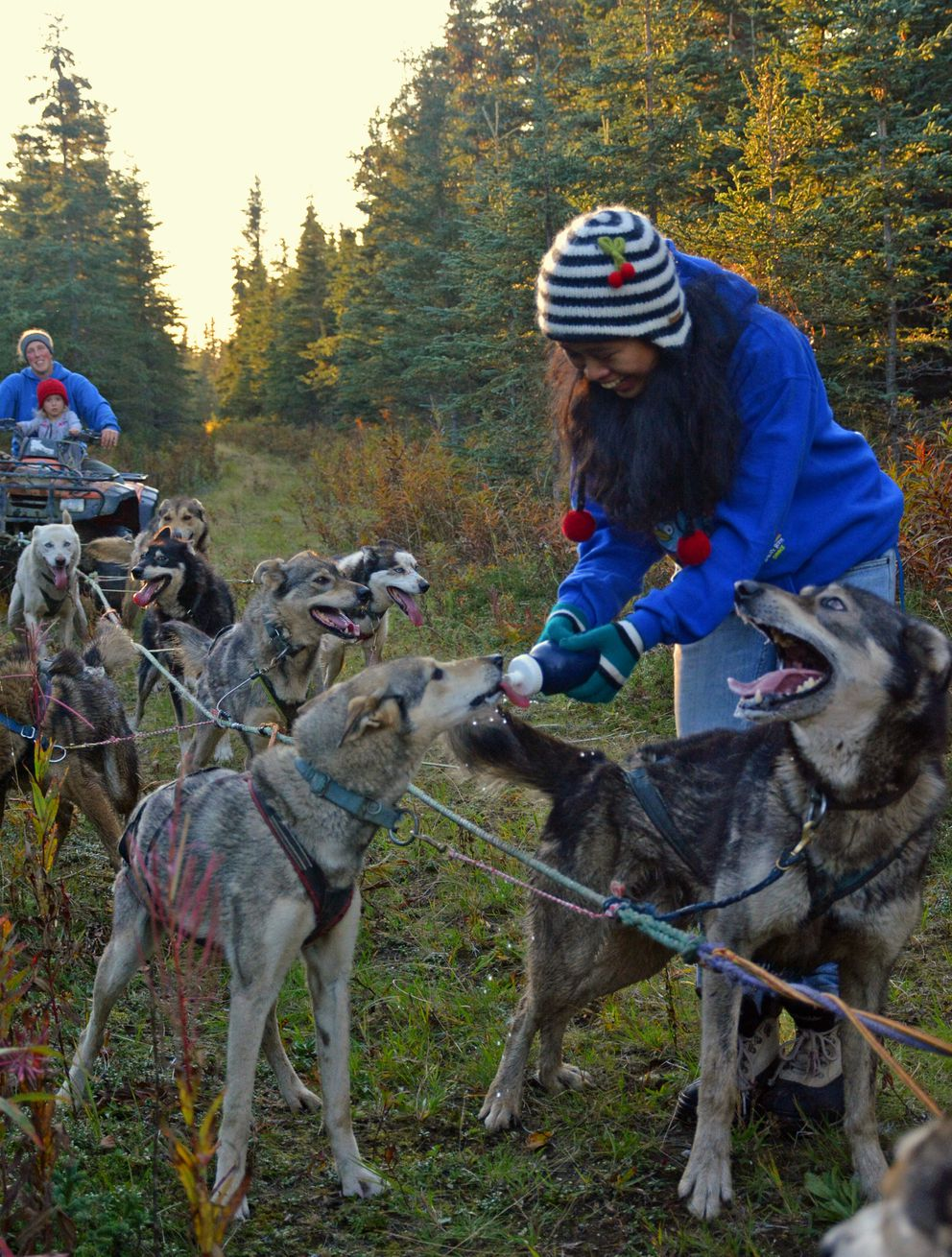 Wearing knit gloves helps prevent Afina from coming in contact with dog saliva – a taboo of her Islamic religion – as sometimes happens when giving the dogs a drink during fall training runs. (Joseph Robertia)