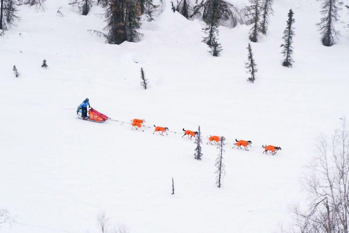 Dallas Seavey drives his dog team near Shell Lake during the Iditarod Sled Dog Race, Sunday, March 14, 2021. (Loren Holmes / ADN)